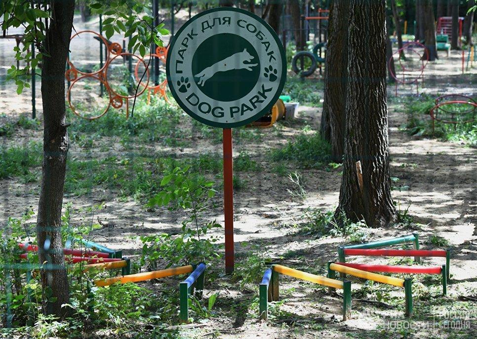 Собачая площадка в Грачевском парке