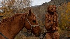 Алтай. Лошадь