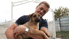 Заведующий приютом для бездомных собак Зеленоград Алексей Игнатов со своим питомцем