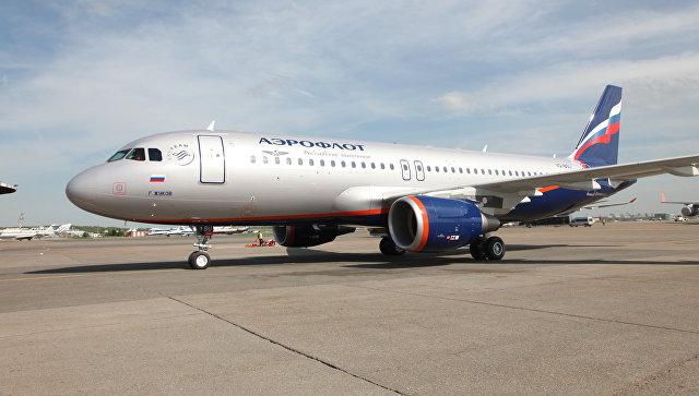 В Омске куропатки помешали вылету самолета в Москву