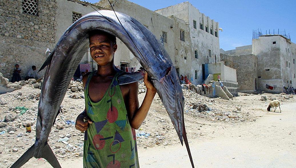 Мальчик несет рыбу на рынок в Могадишо, Сомали