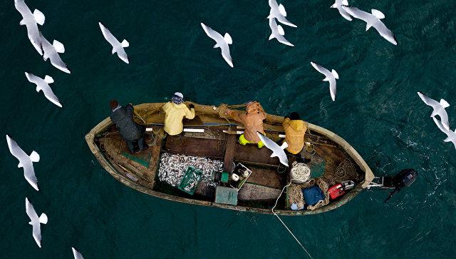 Рыбаки во время прибрежного лова черноморской рыбы в Севастополе. Архивное фото