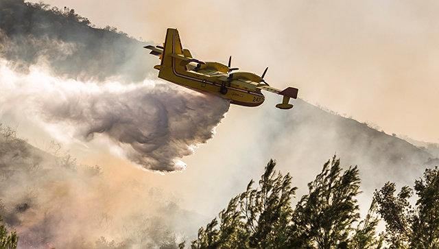 В Рослесхозе сравнили затраты России и США на тушение лесных пожаров
