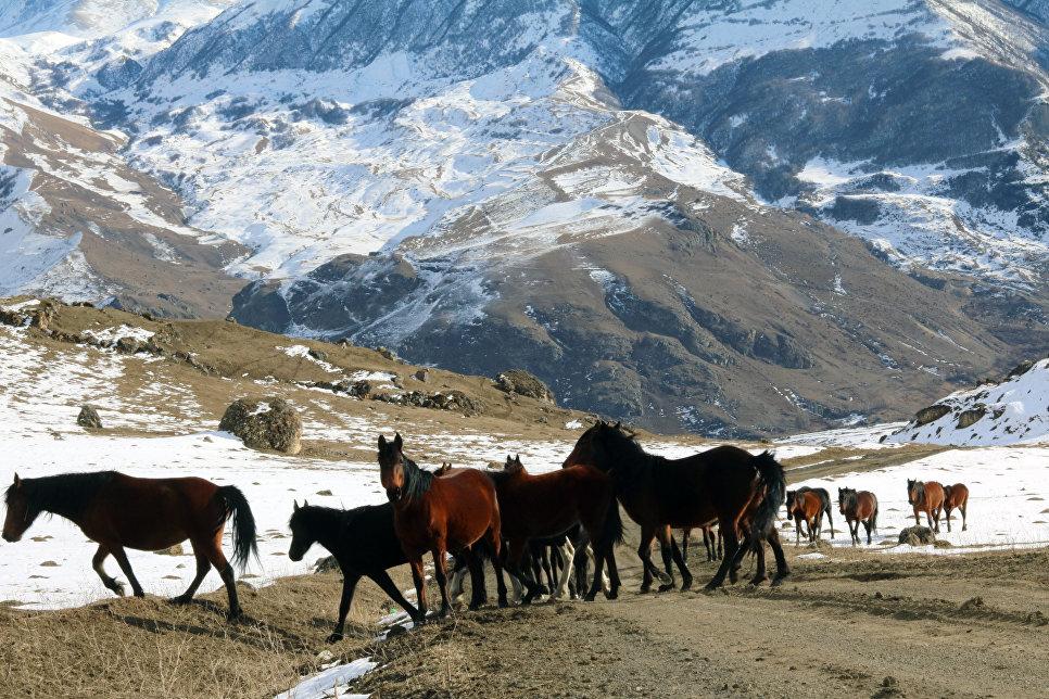 В горах Верхней Балкарии