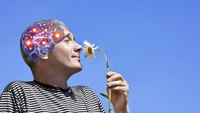 Тайны мозга: невероятная способность человека, которую не удалось объяснить