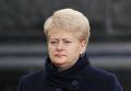 Президент Литвы Д.Грибаускайте прибыла с рабочим визитом в Киев