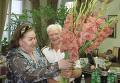 Михаил Кузнецов и Ирина Архипова