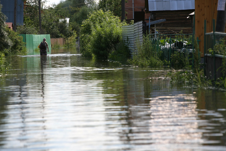 В Новосибирске разлившаяся Обь подтопила 77 дачных участков