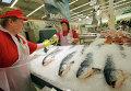Продавцы рыбного отдела