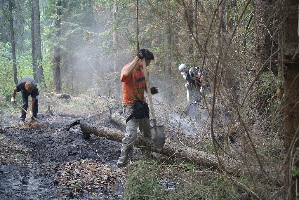 Добровольцы тушат лесные пожары