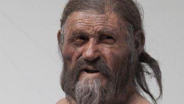 Ученые воссоздали внешний облик альпийского ледяного человека Отци
