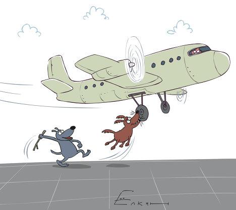 Собаки помешали приземлиться самолету