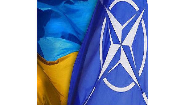 Украина и НАТО. Коллаж