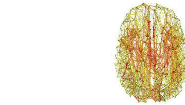 Клуб самых влиятельных нервных центров мозга на его карте