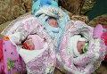 Регистрация детей-тройняшек в Калининградском Доме счастья
