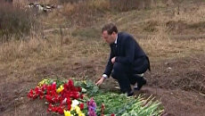 Медведев принес цветы к месту катастрофы Як-42 в Ярославле