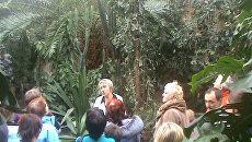 В заполярном ботаническом саду болезни лечат тропическими растениями
