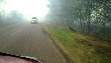 Дым и гарь почти до нуля снизили видимость на дорогах Егорьевска