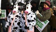 Акция в защиту прав животных в Берлине
