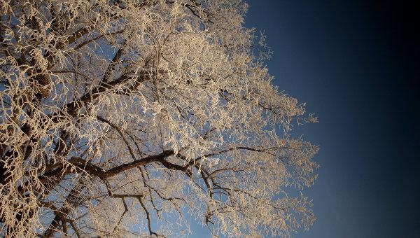 Мороз в России. Архивное фото