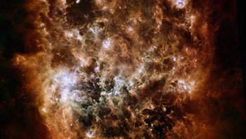 Снимок Большого Магелланова Облака, сделанный телескопом Гершель