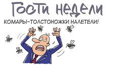 Итоги недели в карикатурах. 20.05.2013 - 24.05.2013