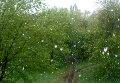 Снег в Кемерово 2 июня. Стоп-кадр из видеоролика