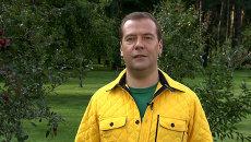 Медведев в блоге рассказал о законопроекте, разрешающем регистрацию на даче