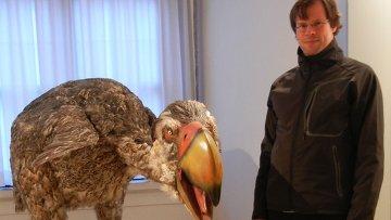 Реконструкция гигантской птицы гасторнис, оказавшейся травоядным животным, а не хищником