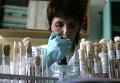 Лаборант во время работы в вирусологической лаборатории Управления Роспотребнадзора. Архивное фото