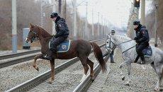 Кавалерийское подразделение полиции в Новосибирске
