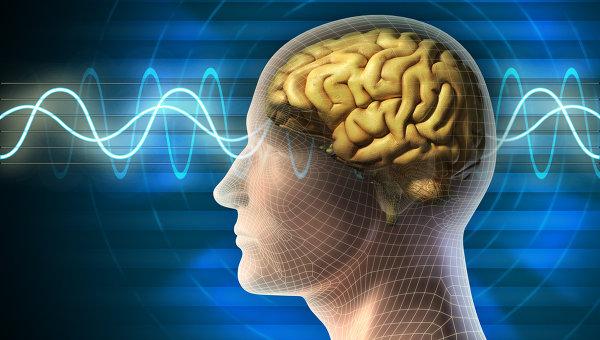 Работа мозга. Архивное фото