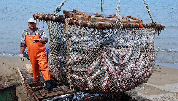 Рыболовецкое хозяйство. Архивное фото