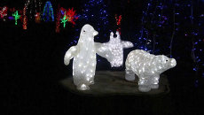 Сад с миллионом огней и светящиеся скульптуры: как украсили ферму к Рождеству
