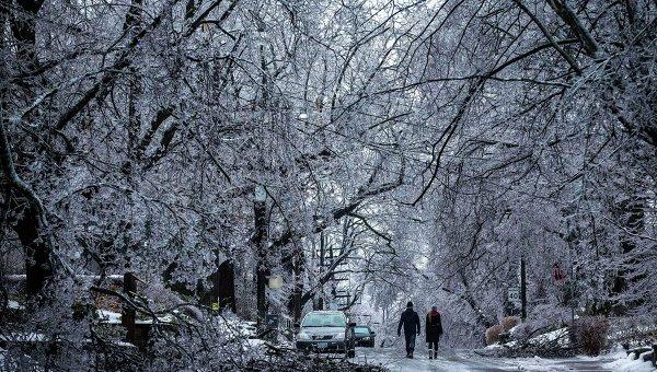 Последствия ледяного дождя в Канаде