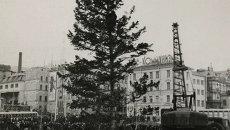 1970-е годы: елка на главной площади Владивостока,  В советские времена общегородские елки были родом из тайги или из приморских лесхозов.