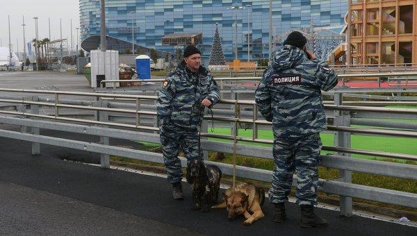Сотрудники полиции на территории Олимпийского парка в Сочи, архивное фото