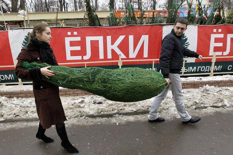 Начало работы елочных базаров в Москве