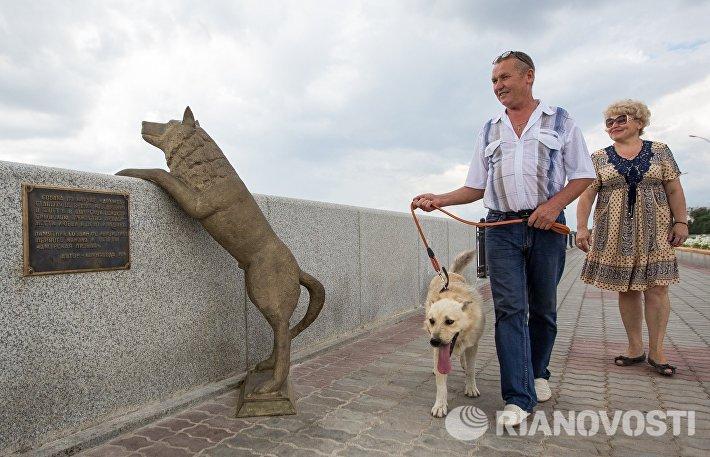 Памятник собаке по кличке Дружок в Благовещенске