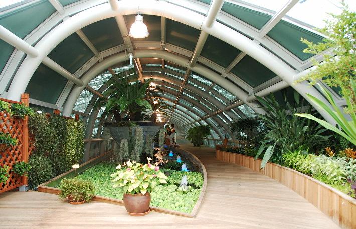 Аэропорт Инчхон - зимний сад