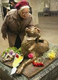 Памятник бездомной собаке - Сочувствие