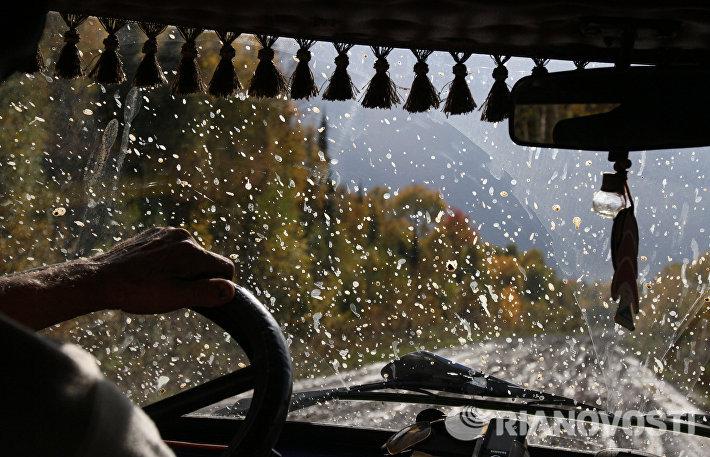 Осень в деревнях Омской области