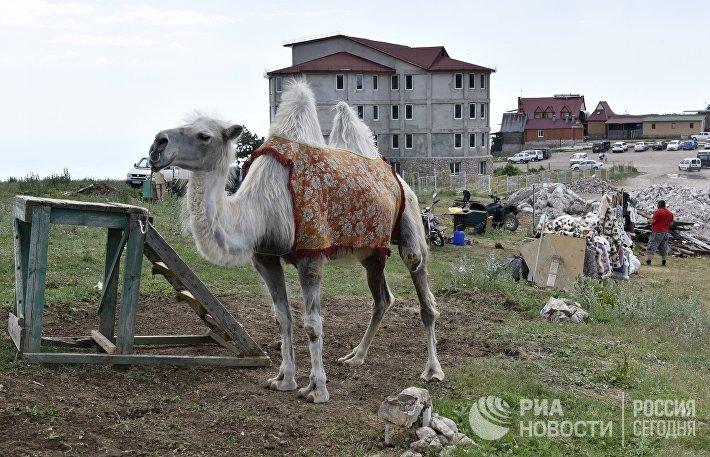 Снос строений на плато Ай-Петри в Крыму подходит к завершению